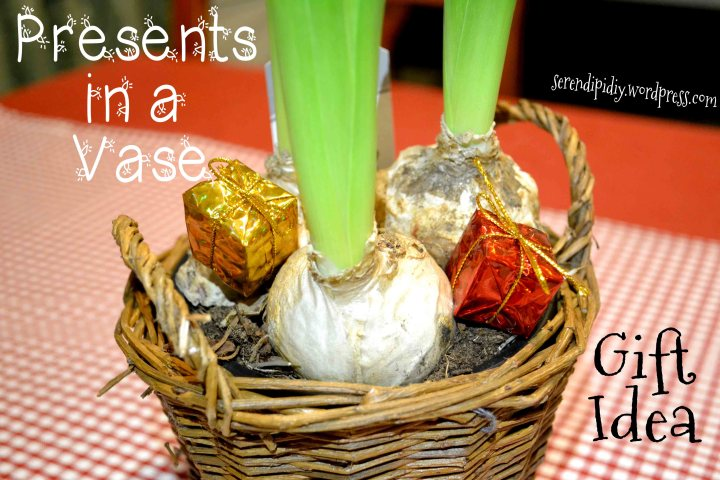 Presents in a vase! Gift Idea - serendipidiy.wordpress.com
