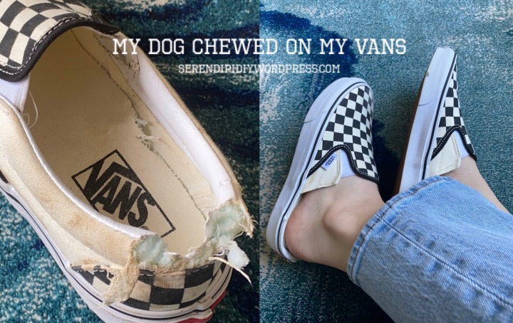 My dog chewed on my slip-on Vans – DIY